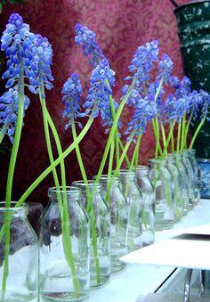 bluebells in milk jugs, simple but striking table flowers @Derek Imai Smith My Wedding #rockmyspringwedding