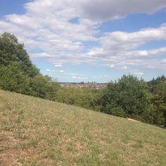 Parco di villa spada Bologna