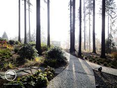 #landcape #architecture #garden #path #forest