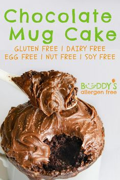 Chocolate Fudge With Chocolate Fudge Frosting! This quick chocolate mug cake can be microwaved in one minute! A great mug cake for kids with food allergies. An easy and healthy vegan eggless dessert. Chocolate Fudge Frosting, Chocolate Mug Cakes, Salted Chocolate, Decadent Chocolate, Best Chocolate, Healthy Chocolate, Chocolate Desserts, No Egg Desserts, Eggless Desserts