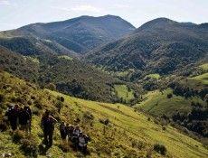 Monte Cestera (15/03/2014) http://redcantabrarural.com/rutas/monte-cestera-15032014/#reservar