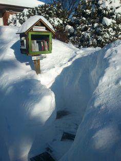 Ma petite bibliothèque gratuite en hiver. My little free library in winter.