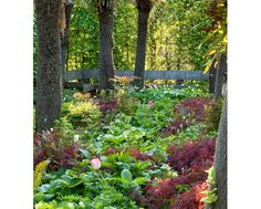 East Ruston Gardens