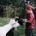 Caledonia Ontario, Zoo Plus, Petting Zoo, Unusual Homes, Zoos, Zoo Animals, Animal Kingdom, Summer Fun, Buildings