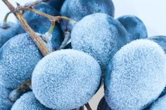 Make popsicles out of Greek yogurt with berries. from Dr. Oz's 100 Best Weight-Loss Tips