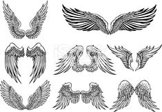 Set of 8 wings graphic elements Chicken wings royalty-free stock vector art illustration Tattoo Drawings, Body Art Tattoos, Tatoos, Wing Tattoos, Sleeve Tattoos, Hanya Tattoo, Wing Tattoo Designs, Wings Design, Free Vector Art