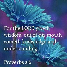 """And, God says he will give you the wisdom you need to recognize his voice and follow through on what he says: """"It is the Lord who gives wisdom; from him come knowledge and understanding"""" (Proverbs 2:6 TEV). Pray this today: """"God, I want to listen to you, not the voices of doubt. I want to get close to you and get to know you better. I want to hear you, and I promise to then obey you. I want to be one of the people that you can use and bless."""""""