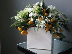 Agapanthus | epoch.floral