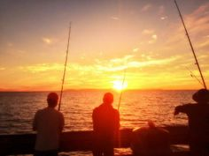Some fishing at sunset in Newport Beach, California