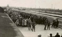 This is a picture of the men and women lining up on selection day in a concentration camp. They're about to be put into their groups in which they will work for until another selection day comes around. The men to the right, and the women to the left.