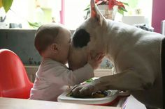 Kisses, and I'll clean your tray while I'm doing it!!