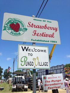 Pungo Strawberry Festival in Virginia Beach, VA (Pungo farms Cullipher Farm Market and Brookdale Farm.)