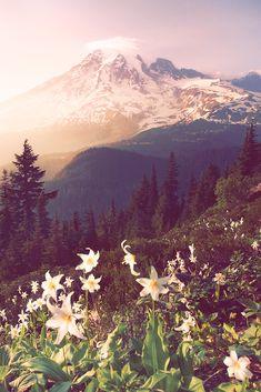 The Mountain (by posthumus_cake)