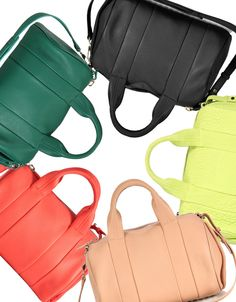 Rainbow of Alexander Wang