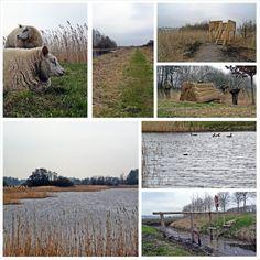Mooiste wandeling van Friesland collage