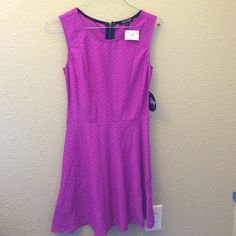Plum/ purple  dress (NWT) Purple/plum dress with black lining on the inside with a black and gold zipper on the back. This time has never been worn with tags! BeBop Dresses Midi