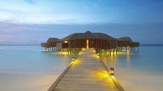 lily-beach-maldives1.jpg (1920×1080)