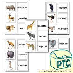 African Animal Resources - Primary Treasure Chest Teaching Activities, Teaching Resources, Teaching Ideas, African Animals, African Safari, Crafts For Kids, Arts And Crafts, Matching Cards, Role Play