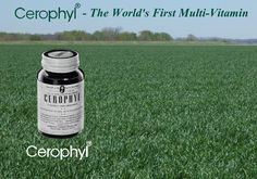 The History of Cerophyl Laboratories Biographical Information about Charles F. Schnabel. Ann Wigmore and History of Cereal Grass Products such as Pines Wheat Grass