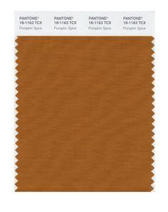 Pantone 18-1163 TCX Smart Color Swatch Card, Pumpkin Spice - Amazon.com