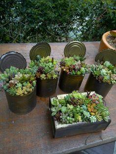 Reciclando latinhas...reuse