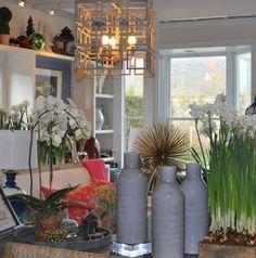 #Southampton #Mecox #interiordesign #MecoxGardens #home #decor #design #Hamptons