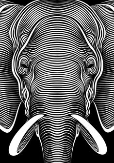 Elephant : Faces lll by Patrick Seymour on Behance Patrick Seymour, Animal Original, 3d Art Drawing, Contour Drawings, Drawing Faces, Drawing Tips, Opt Art, Foto 3d, Graphisches Design