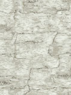 Natural Elements Birch Bark Wallpaper By York