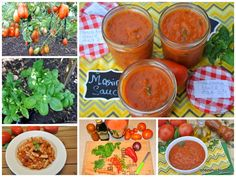 Tomatoes and Italian herbs are growing in abundance in my garden. So I made marinara sauce and froze it for later use!