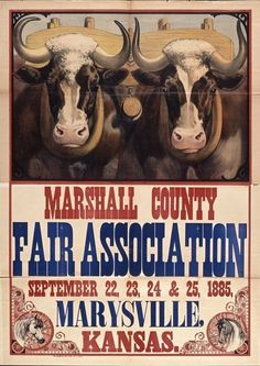21 Best Vintage Fair Posters Images County Fair Kansas