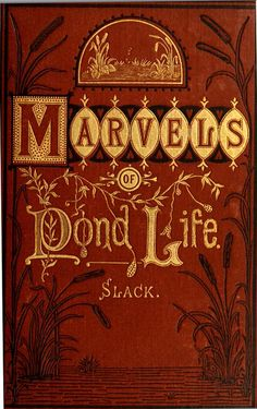 The Marvels of Pond Life by Henry Slack 1871