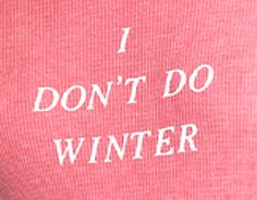 WILDFOX - I Don't Do Winter Seer Tee