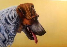 Dog portait 2013