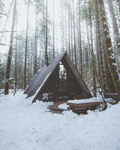 Daily dose of camping inspiration Outdoor Life, Outdoor Camping, Outdoor Living, Camping Places, Camping And Hiking, Survival Life, Survival Gear, Seattle Winter, Vsco Nature