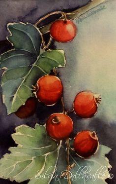 SET 5 CARTOLINE  Serie Botaniche  Ribes. di SilviaDallavalle