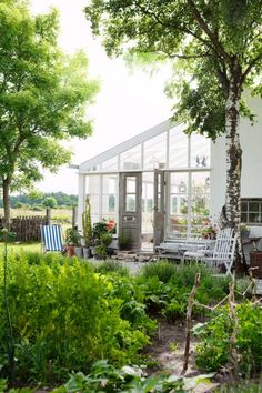 Tips för att bygga växthus av återbruk. foto Ulrika Ekblom