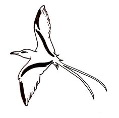 Logos et graphismes | Alys Art et Création