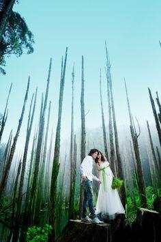 主題婚紗攝影 - 忘憂森林 Tiffany 行旅