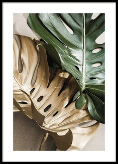 Posters with Scandinavian Design. Desenio Posters, Gold Poster, Country Wall Art, Nature Posters, Image Originale, Golden Leaves, Plant Art, Modern Art Prints, Leaf Art