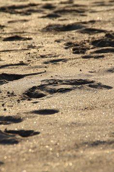 #Sand #Bali