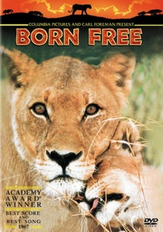 Born Free. Saw this at the Castro too, on my 13th birthday. I'd asked for a camera, and when I opened my presents that night, I got one!