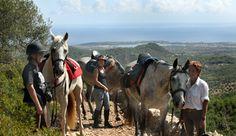 Spain Mallorca Island Dressage Training & Trails - Destinations - Equitrekking Travel