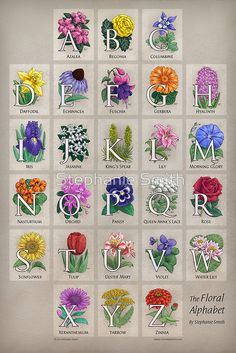 """I may want to paint these in my daughters room one day   """"The Floral Alphabet"""" by Stephanie Smith"""