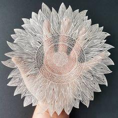 Paper sunflower cutou