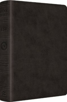ESV Reader's Bible...no verse numbers so it reads like we are used to with any other book.