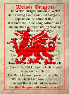 Welsh Dragon Welsh Dragon, Celtic Dragon, Celtic Art, Red Dragon, Wales Uk, North Wales, Welsh Words, Welsh Phrases, Learn Welsh