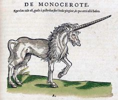 Unicorn from Conrad Gesner's Historiae Animalium, 1551.