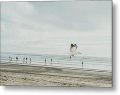 """California Seagull"" California bird on the beach photography on metal print by Valerie Rosen Photography"