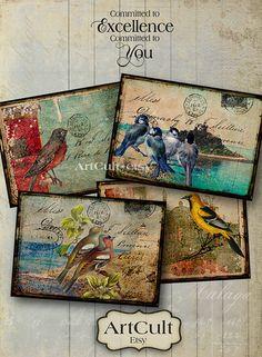 TATTERED BIRDS - Digital Collage Sheet Printable Gift Tags Greeting Cards Vintage images Paper Craft scrapbook