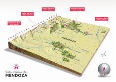 Mendoza  | Wines Of Argentina
